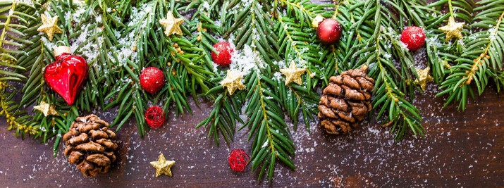 Christmas is filled with symbols, many of which have lost their Christian  symbolism in a secular world. Here you will find the Christian meaning of  ... - Christian Meaning Of Christmas Decorations - Archdiocese Of New